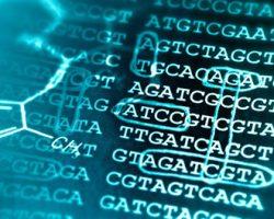Bioinformatics_Solution_circulants